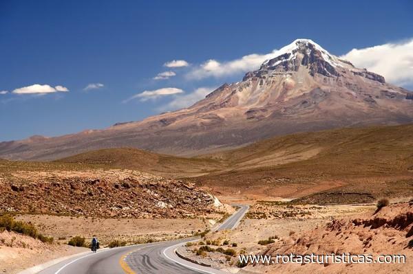 Fotos de wilstermann bolivia 52